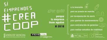FEVECTA celebra una nueva sesión de networking para nuevas cooperativas federadas de Valencia, Castellón y Comarcas centrales